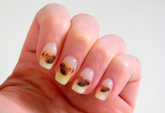 PUG NAILS 8