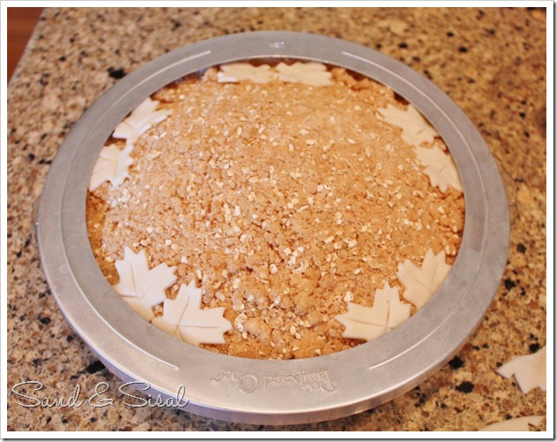 cover pie crust  (800x630)