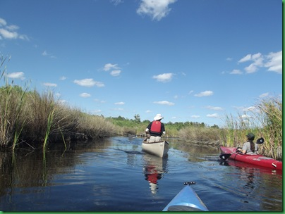 Turner River Paddle 1 (48)