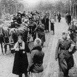 De tyske østflygtninge