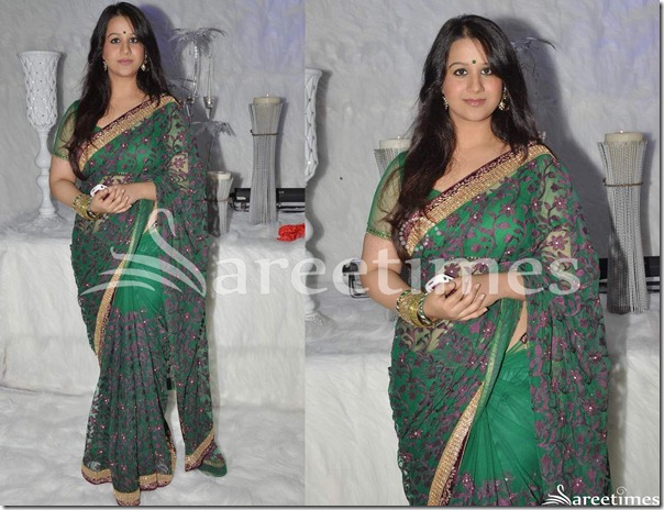 Green_Embroidery_Net_Saree