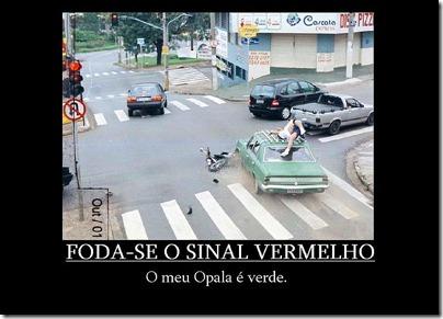 800px-Opala_Demotivator