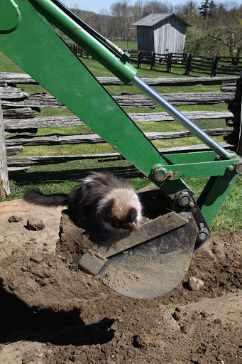 I'll just move the backhoe manually - or is that catually?