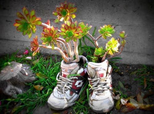 Tận dụng giày dép cũ trong nhà để trồng hoa