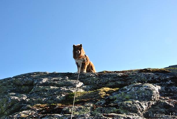 Turufjell 090