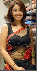 richa-veryhot_saree