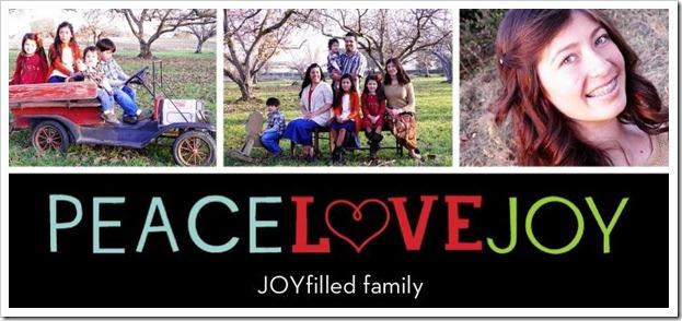 Peace Love Joy TOP FRONT