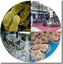 Materi Bioteknologi Untuk SMP
