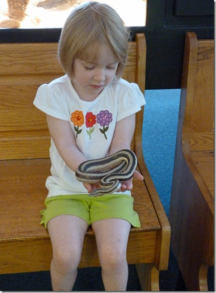 Reptile Zoo - Holding a Snake 2