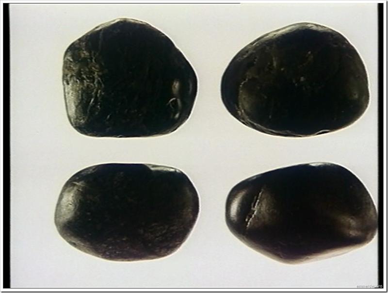 jan svankmajer a game with stones 1965 emmerdeur_62