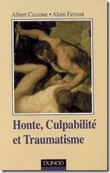 honte,-culpabilite-et-traumatisme-28692-250-400