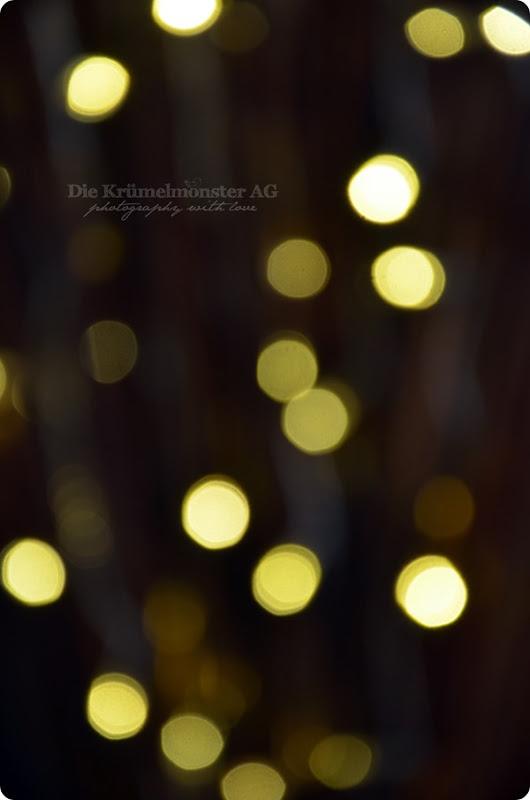Lichterglanz - Weidenlämpchen (3)