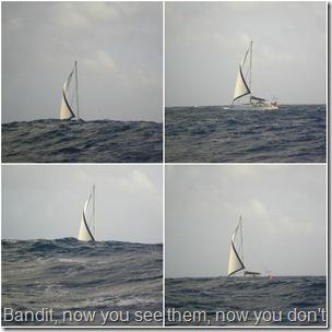 2012 Venezuelan Islands-2