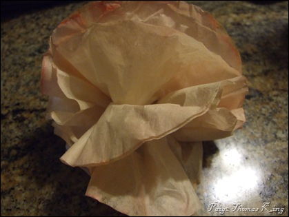 coffee filter open