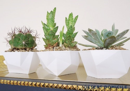 DIYDipBowlSucculentPlanters_AfterAngle
