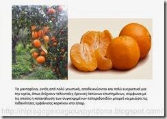 τα φρούτα του φθινοπώρου (1)