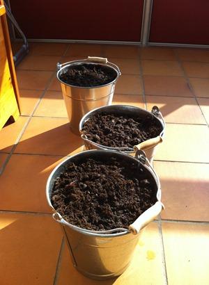 hinkplantering
