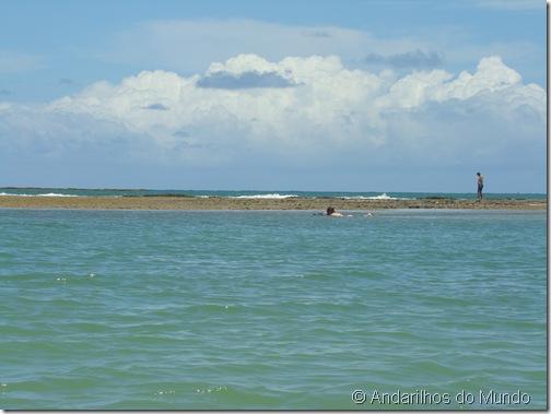 Praia de São Miguel dos Milagres Alagoas Piscinas Naturais