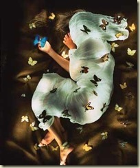 borboletas-thumb