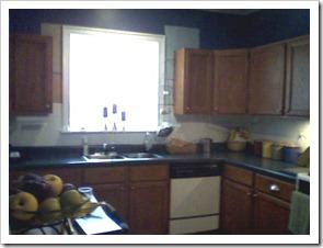 kitchen before.kitchen[14]