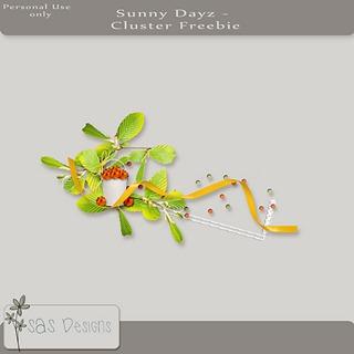 sas_sunnydayz_cluster_free_pre