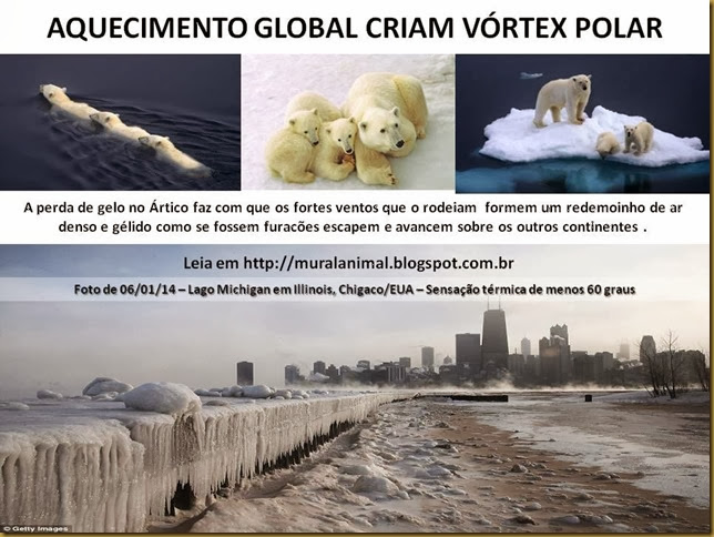 AQUECIMENTO GLOBAL CRIAM VÓRTEX POLAR