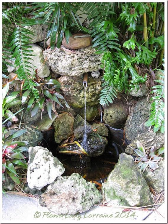 11-20-fountain2