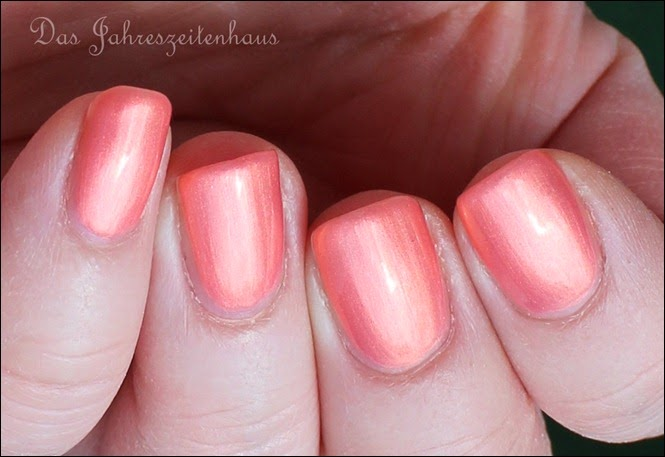 Koralle P2 Rosy Coral Deep Water Love 6