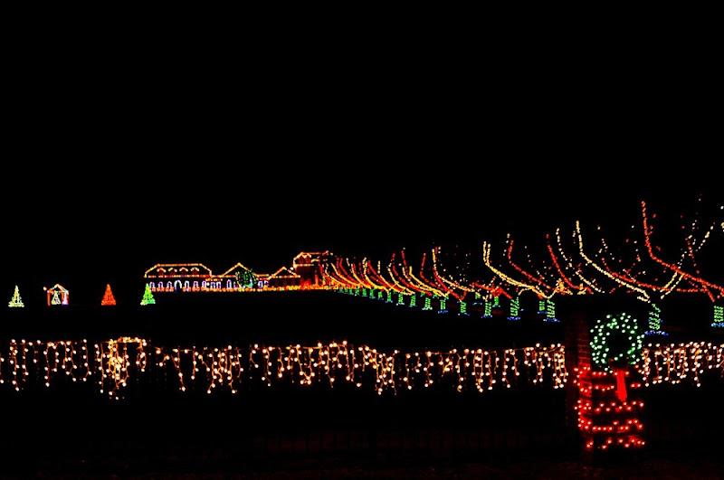 lights-3514
