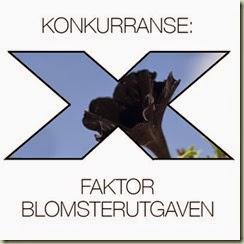 x-faktorsvart