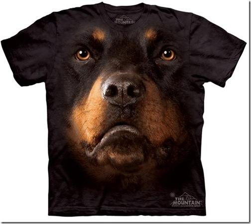 camisetas de Montain-5