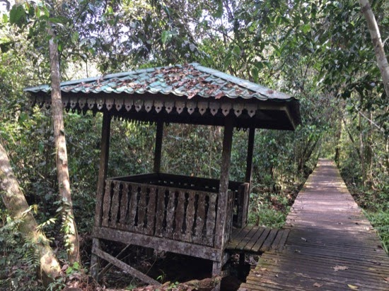 Derelict shelter Bukit Lima Forest Park