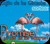 Sorteo de Promise