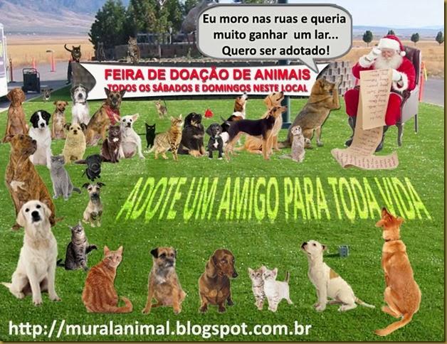 natal-animais