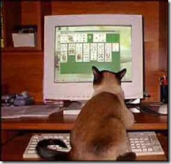 cat-solitaire-view (Small)