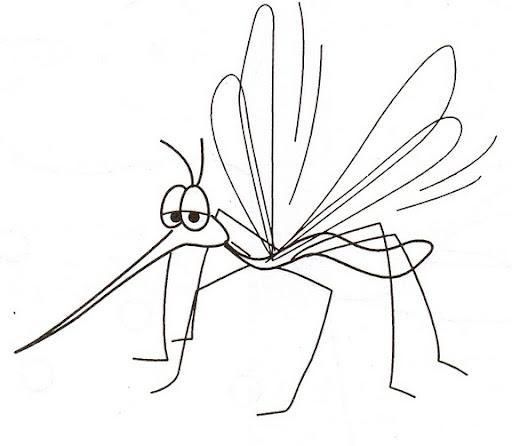 Laminas para colorear del dengue - Imagui