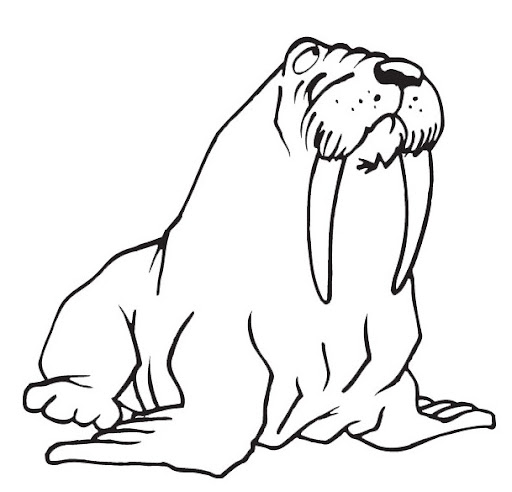 dibujo leon marino imagui