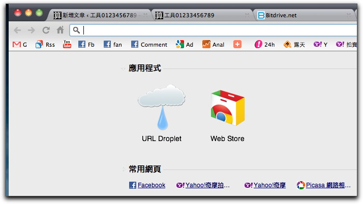 Google Chrome201105009.jpg