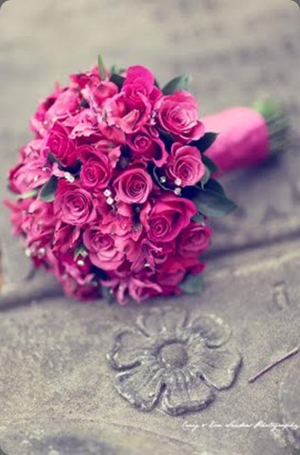007 mood flowers craig and eva sanders photo