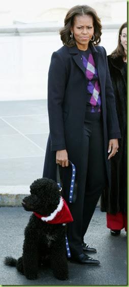 Michelle Obama Michelle Obama Receives Official irSih2E1B6bl