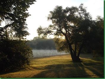 Gifford Pinchot Site B311 (26)