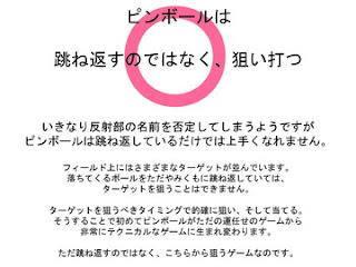 20121118_pinball_slid8.jpg