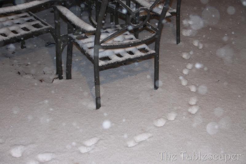 Snow! 267
