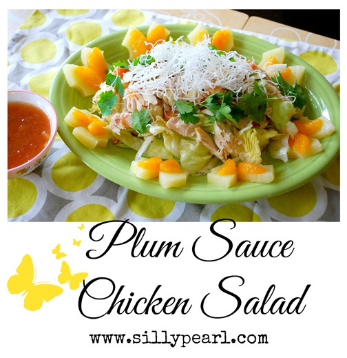 Plum Sauce Chicken Salad - The Silly Pearl