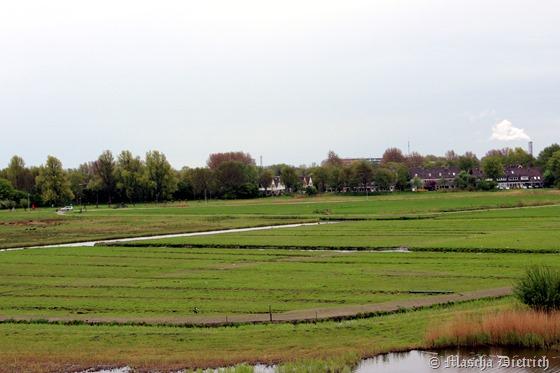 Dagje natuur in Alkmaar 009
