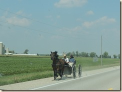 04.Horse-and-buggy