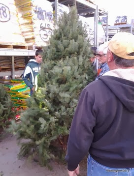 Picking a tree at Home Depot