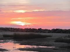 Corporation Beach sunset photo2...1.8.19.12