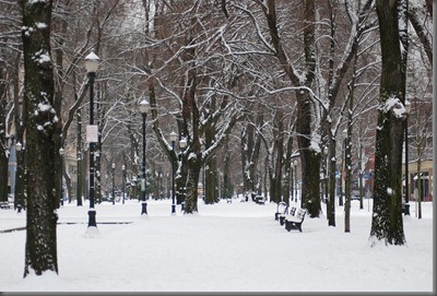 north-park-blocks-in-portland-oregon-in-the-snow-bruce-lowry