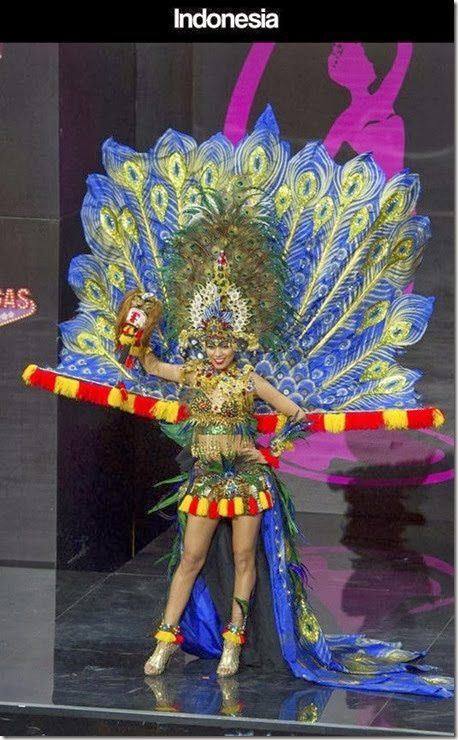 miss-universe-costume-31